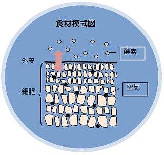 特殊軟化食材模式図